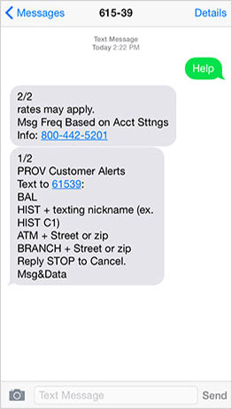 Image of sample screen showing options for Mobile Banking texting
